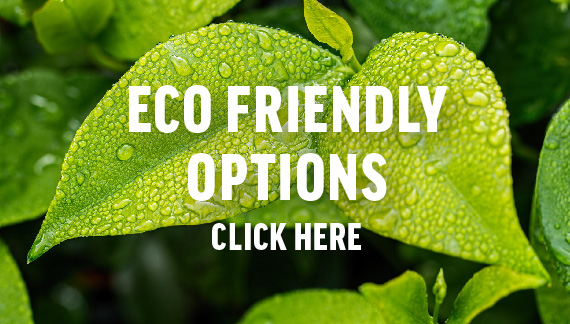 eco friendly options